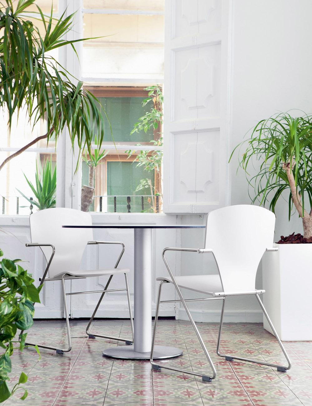 Stua - Egoa székcsalád